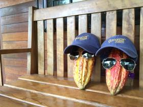 We've definitely been out in the cacao fields too long! #GFCSourcing
